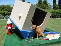 """dog own upside down house too""""lol poor doggie Upside Down House, Small Room Design, Dog Houses, Dog Stuff, Buildings, Lol, Make It Yourself, City, Amazing"""