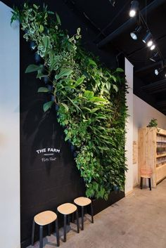The Farm Wholefoods – by Vertikal. Extraordinary vertical gardens for inspirin. - The Farm Wholefoods – by Vertikal. Extraordinary vertical gardens for inspirin. Jardin Vertical Diy, Vertical Garden Design, Vertical Gardens, Vertical Green Wall, Hotel Lobby Design, Design Entrée, Cafe Design, Design Ideas, Design Concepts