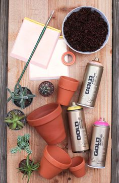 DIY Gold-Leafed Succulent Pots by Miss Renaissance I am in love with these amazing little plants!!