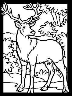 Deer Coloring Pages for your Lovely Kids. Having the deer coloring pages is one of the great ways that you can do to develop their ability in coloring a picture Forest Coloring Pages, Deer Coloring Pages, Sports Coloring Pages, Coloring Pages To Print, Free Printable Coloring Pages, Coloring Pages For Kids, Coloring Books, Free Coloring, Coloring Sheets
