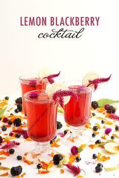 Lemon Blackberry Cocktail Recipe   alanajonesmann.com
