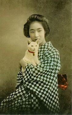Japanese beauty with white cat on hand coloured postcard - 1910s