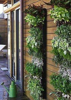 14 benefits of vertical gardens #garden