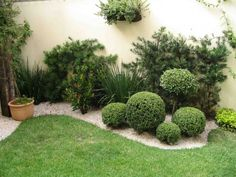 Boxwood garden plants are drought-tolerant. Properly mulching the shallow-rooted boxwood garden plants helps retain moisture and keep roots cool. Landscaping With Rocks, Modern Landscaping, Front Yard Landscaping, Backyard Landscaping, Backyard Ideas, Garden Ideas, Landscaping Ideas, Walkway Ideas, Landscaping Software