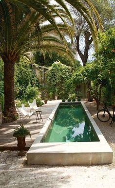 En un jardín cerrado de Niza, piscina hecha de concreto reforzado, flanqueada por un deck de ipé (madera de hermoso aspecto y durabilidad natural) diseñado por el arquitecto Piercarlo Dondona.