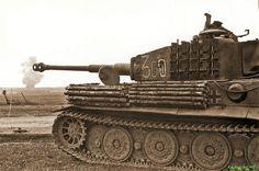 Tiger1 number 300