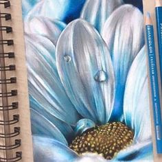 What a beautiful page in @fiona_aarts sketchbook.  Materials: ► colored pencil on Strathmore 400 Series Toned Tan Sketch paper.       #strathmore #strathmorepaper #strathmoreart #tonedtan #tonedpaper #tonedart #tanpaper #art #artist #Artwork  #coloredpencil #colouredpencil #coloredpencils #colouredpencils #pencils #pencilart #pencildrawing #draw #drawing #flower #flowerart #flowerdrawing #sketchbook #sketch #flowers #spring #springart #pencil #artpaper #artonpaper Realistic Flower Drawing, Simple Flower Drawing, Easy Flower Drawings, Pencil Drawings Of Flowers, Colored Pencil Artwork, Realistic Pencil Drawings, Abstract Drawings, Colorful Drawings, Colored Pencils