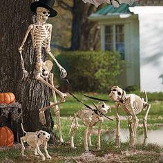 Great Halloween Display Halloween In 2019 Outdoor
