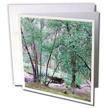 3dRose - Jos Fauxtographee Realistic - The Stream and trees done in cool tones in Pine Valley Canyon, Utah - Greeting Cards