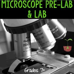 Microscope Pre-Lab and Lab by Biology Roots | Teachers Pay Teachers