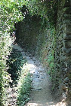 Walking the Sentiero Azzuro - Cinque Terre, Italy
