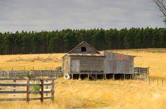 Old Farm Shed, Dartmoor - Hamilton Road, Digby, 17 January 2013 South Australia, Australia Travel, Farm Shed, Macedon Ranges, Yarra Valley, Dartmoor, Old Farm, Sheds, National Parks