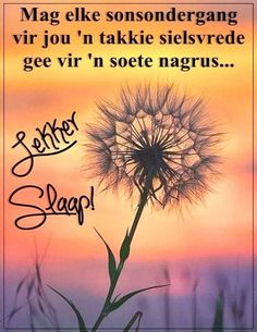 Goeie Nag, Afrikaans Quotes, Morning Inspirational Quotes, Good Morning Good Night, Sleep Tight, Love You More, Bible Quotes, Qoutes, Boss Wallpaper