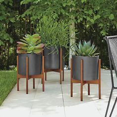 Case Study Modern Planters with Walnut Stand