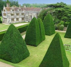 Athelhampton Gardens, Topiary 3 | Credit Athelhampton Estate… | Flickr - Photo Sharing!