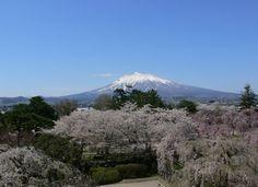 眺望岩木山(弘前城) - お湯の国 日本