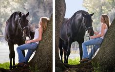 Horse Sense: 12 Tricks for Better Equine Photography (Professional Photographer Magazine Web Exclusives)