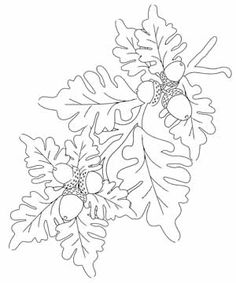 free acorn digital stamp set - this would make a great hand embroidery pattern!