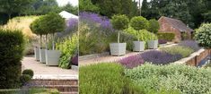 Oxford Planters in garden designed by Anthony Paul Landscape Design