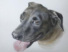 Watercolor of dog by Jan Riggins Custom Art Watercolor Portraits, Custom Art, Art Boards, Art Projects, My Arts, Dog, Pets, Animals, Diy Dog