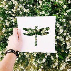 scherenschnitt vorlage libelle feldblumen weiße blüten