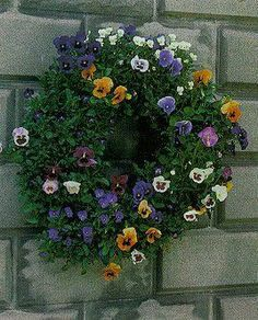 How To : Plant A Pansy Living Wreath