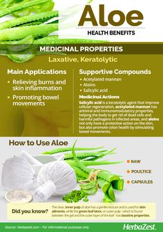 Aloe has been cultivated for human use for over years, and for good reason: its medicinal benefits for the skin continue to remain unparalleled to this day. Coconut Benefits, Fruit Benefits, Health Benefits, Natural Medicine, Herbal Medicine, Natural Health Remedies, Healing Herbs, Health Facts, Health And Wellbeing