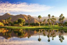 The City of Palm Springs was awarded the Best SoCal Getaway Runner Up: Both 2011 and 2012 Los Angeles Times Readers Choice awards. And Terra Cotta Inn was voted best small resort in Southern California receiving a First Place award in 2011 and 2012. Call us at 1-800-786-6938 and try a fun nude sunbathing vacation.