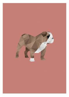 An Illustration of a British Bull Dog to represent different animals check out more animal on my Behance Profile