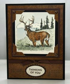 Deer Thinking of You by annascreations - Cards and Paper Crafts at Splitcoaststampers