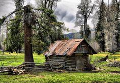 A true log cabin.