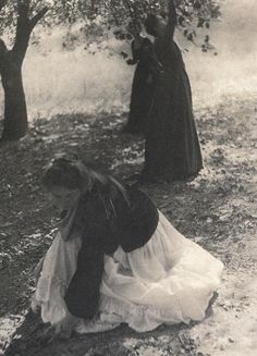 Women Picking Apples in an Orchard, 1905- Vintage Photo Print, Ready to Frame! by KingofRamen on Etsy https://www.etsy.com/listing/196617456/women-picking-apples-in-an-orchard-1905