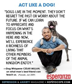 "Quote of the day: "" Dogs live in the moment. They don't regret the past or worry about the future. If we can learn to appreciate and focus on what's happening in the here and now, well experience a richness of living that other members of the animal kingdom enjoy..""– Dog Whisperer Cesar Millan on what man's best friend can teach us."