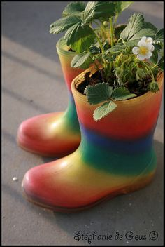 Plant boots!