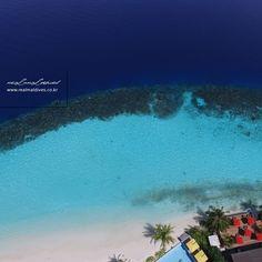 몰디브 아웃리거 코노타 리조트의 하늘에서 내려다본 라군과 리프의 모습입니다. 이렇게 다양한 블루의 아름다운 광경을 보신 적 있으신가요? #아웃리거코노타리조트 #리얼몰디브 #몰디브 #Maldives #몰디브여행사 #몰디브리조트 #traveling