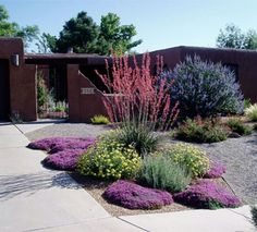 Steal these cheap and easy landscaping ideas for a beautiful backyard. Get our best landscaping ideas for your backyard and front yard, including landscaping design, garden ideas, flowers, and garden design. Drought Resistant Landscaping, Low Water Landscaping, Small Front Yard Landscaping, Drought Tolerant Landscape, Landscaping Ideas, Landscaping Software, Drought Resistant Plants, Arizona Landscaping, Modern Front Yard