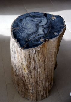 This petrified wood table literally exemplifies long-lasting art. Petrification is a natural process in which minerals replace a plant's organic material, preserving it in fossilized form. Many specimens of petrified wood, such as those found in Arizona, date back by hundreds of millions of years.