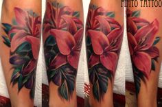 Realistic colour pink lily tattoo by Pimto.