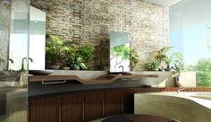 Se você fosse uma planta, gostaria de morar no banheiro?