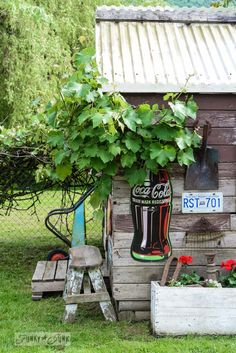 If Rustic Garden Sheds Could Tell Stories, This One Would Say...