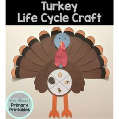 Craft includes: life cycle charts (with and without pictures) head body wings beak legs snood waddle feathers Elementary Science, Teaching Science, Science Activities, Elementary Schools, Cycle Pictures, Life Cycle Craft, Life Cycles, Farm Animals, Charts