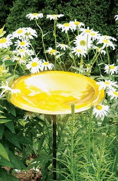 Non-Heated Bird Baths, Decorative and Functional Bird Baths for the Garden, Quality Birdbaths at Songbird Garden