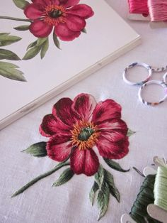 Elisabetta hand embroidery: Embroidery classic