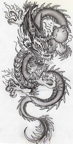 Dragon by SMP-kitten.deviantart.com on @deviantART