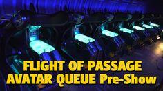 NEW Flight of Passage ride queue, pre-show in Pandora - The World of Avatar at Walt Disney World Avatar Land, Disney World Trip, Pandora, Funny Disney, Disney Stuff, Animal Kingdom, Youtube, Youtubers, Youtube Movies