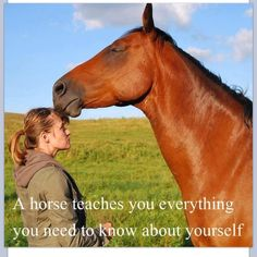 A horse techies you everything you need to know about yourself. For better or worse, they often reflect their rider's personalities.