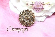 Set of 5  Metal Rhinestone  Champagne  by LilysFlowerSupply