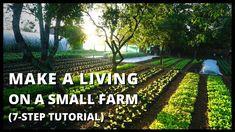 How to Start a Farm From Scratch (Beginner's Guide to Growing Vegetables for Profit) Starting A Farm, Starting A Garden, Seed Starting, Organic Farming, Organic Gardening, Farm Gardens, Veggie Gardens, Veg Garden, Garden Beds
