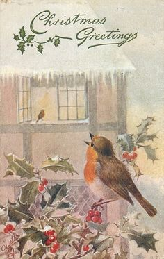 ■ Tuck DB... robin sits singing on holly and watches another on sill of open window | artist: A.W. (A.L. West) (first used 22/12/1906)