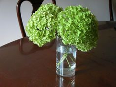 How to Dry Hydrangeas - The Best Ways to Dry Hydrangea Flowers: The Water Drying Method